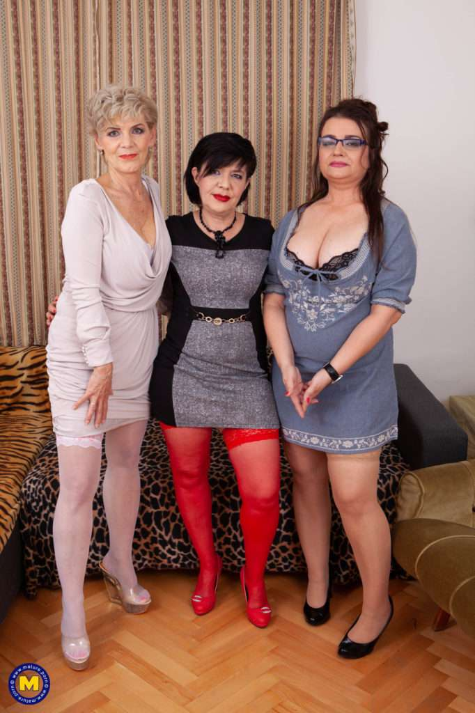 Three Very Horny Mature Ladies Share One Hard Young Lad In Their Groupsex Afternoon